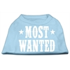 Mirage Pet Products Most Wanted Screen Print Shirt Baby Blue Lg (14)