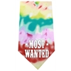 Mirage Pet Products Most Wanted Screen Print Bandana Tie Dye