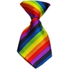 Mirage Pet Products Dog Neck Tie Rainbow