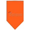 Mirage Pet Products Believe Rhinestone Bandana Orange Large