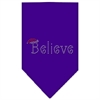 Mirage Pet Products Believe Rhinestone Bandana Purple Large