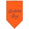 Mirage Pet Products Birthday Boy Rhinestone Bandana Orange Small