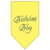 Mirage Pet Products Birthday Boy Rhinestone Bandana Yellow Small