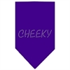 Mirage Pet Products Cheeky Rhinestone Bandana Purple Large