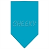 Mirage Pet Products Cheeky Rhinestone Bandana Turquoise Large