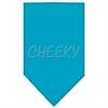 Mirage Pet Products Cheeky Rhinestone Bandana Turquoise Small