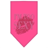 Mirage Pet Products I'm Too Sexy Rhinestone Bandana Bright Pink Small
