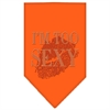 Mirage Pet Products I'm Too Sexy Rhinestone Bandana Orange Small
