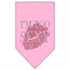 Mirage Pet Products I'm Too Sexy Rhinestone Bandana Light Pink Small