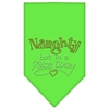 Mirage Pet Products Naughty but in a Nice Way Rhinestone Bandana Lime Green Small