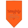 Mirage Pet Products Naughty but in a Nice Way Rhinestone Bandana Orange Small