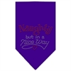 Mirage Pet Products Naughty but in a Nice Way Rhinestone Bandana Purple Large