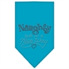Mirage Pet Products Naughty but in a Nice Way Rhinestone Bandana Turquoise Large