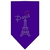 Mirage Pet Products Paris Rhinestone Bandana Purple Large