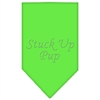 Mirage Pet Products Stuck Up Pup Rhinestone Bandana Lime Green Small