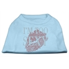 Mirage Pet Products I'm Too Sexy Rhinestone Shirts Baby Blue XXL (18)