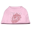 Mirage Pet Products I'm Too Sexy Rhinestone Shirts Light Pink XXL (18)