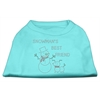 Mirage Pet Products Snowman's Best Friend Rhinestone Shirt Aqua XL (16)