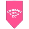 Mirage Pet Products Aberdoggie NY Screen Print Bandana Bright Pink Small