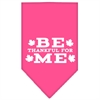 Mirage Pet Products Be Thankful for Me Screen Print Bandana Bright Pink Large