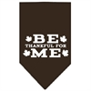 Mirage Pet Products Be Thankful for Me Screen Print Bandana Cocoa Small