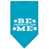 Mirage Pet Products Be Thankful for Me Screen Print Bandana Turquoise Small