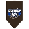 Mirage Pet Products Birthday Boy Screen Print Bandana Cocoa Large