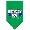Mirage Pet Products Birthday Boy Screen Print Bandana Emerald Green Large