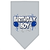 Mirage Pet Products Birthday Boy Screen Print Bandana Grey Small