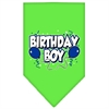 Mirage Pet Products Birthday Boy Screen Print Bandana Lime Green Small