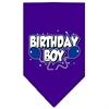 Mirage Pet Products Birthday Boy Screen Print Bandana Purple Small