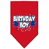 Mirage Pet Products Birthday Boy Screen Print Bandana Red Small