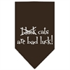 Mirage Pet Products Black Cats are Bad Luck Screen Print Bandana Cocoa Large