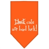 Mirage Pet Products Black Cats are Bad Luck Screen Print Bandana Orange Large