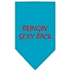 Mirage Pet Products Bringin Sexy Back Screen Print Bandana Turquoise Large