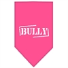 Mirage Pet Products Bully Screen Print Bandana Bright Pink Small
