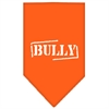 Mirage Pet Products Bully Screen Print Bandana Orange Small