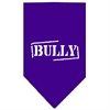 Mirage Pet Products Bully Screen Print Bandana Purple Large