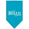 Mirage Pet Products Bully Screen Print Bandana Turquoise Large