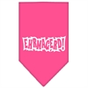 Mirage Pet Products Ehrmagerd Screen Print Bandana Bright Pink Large