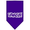 Mirage Pet Products Ehrmagerd Screen Print Bandana Purple Small