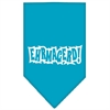 Mirage Pet Products Ehrmagerd Screen Print Bandana Turquoise Small