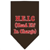 Mirage Pet Products Head Elf In Charge Screen Print Bandana Cocoa Small