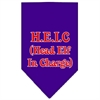 Mirage Pet Products Head Elf In Charge Screen Print Bandana Purple Small