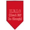 Mirage Pet Products Head elf In Charge Screen Print Bandana Red Small