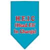 Mirage Pet Products Head elf In Charge Screen Print Bandana Turquoise Small