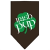 Mirage Pet Products Irish Pup Screen Print Bandana Cocoa Small