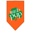 Mirage Pet Products Irish Pup Screen Print Bandana Orange Large