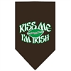 Mirage Pet Products Kiss me I'm Irish Screen Print Bandana Cocoa Large