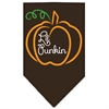 Mirage Pet Products Lil Punkin Screen Print Bandana Brown Large
